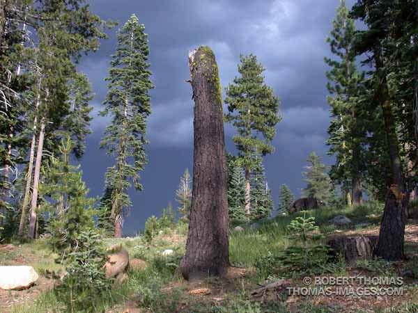 Original Image - Sierra Monolith