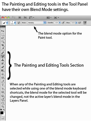 The Painting and Editing section of the Tools Panel
